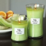 woodwick candle citrus melon